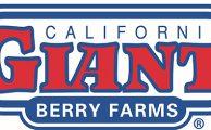 California Giant adds #blockchain
